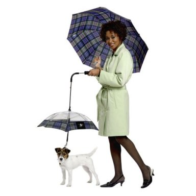 como-combinar-paraguasParaguas_paraperros