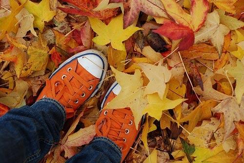 Cómo Combinar ropa naranja: zapatos