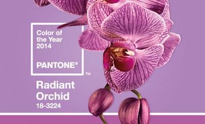 Colores tendencia Primavera Radiant Orchid