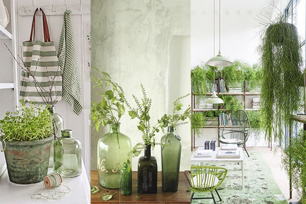 color greenery con plantas