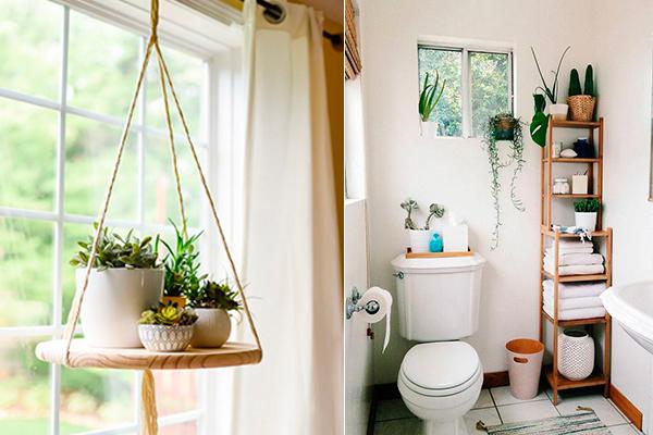 decorar con plantas casa